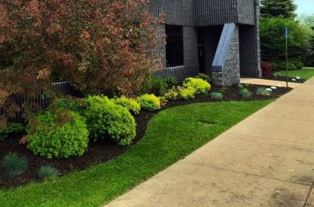 High quality results of our dedicated landscaping work. This photo was taken in Mesquite, TX.